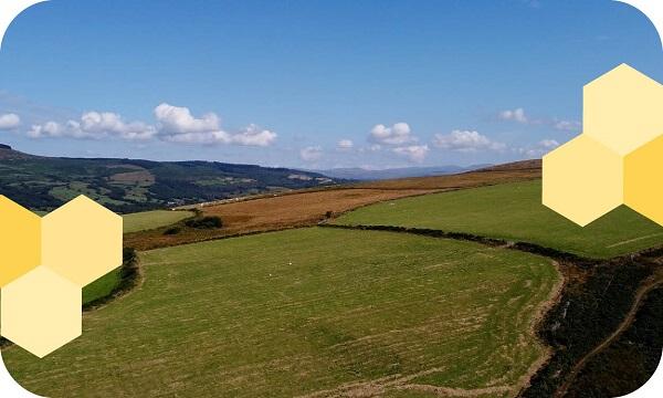 scenic-fields-blue-sky